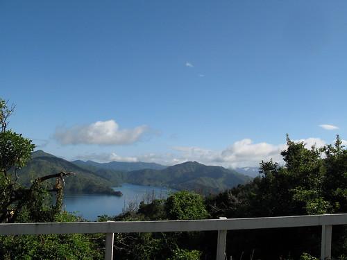 New Zealand 1313
