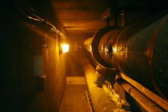 Pimlico District Heating Undertaking