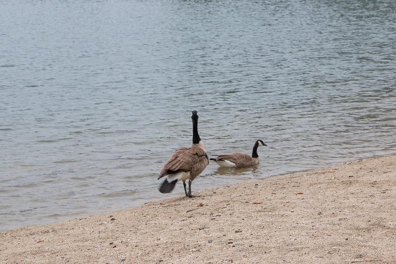 05.07. Whiskeytown Lake