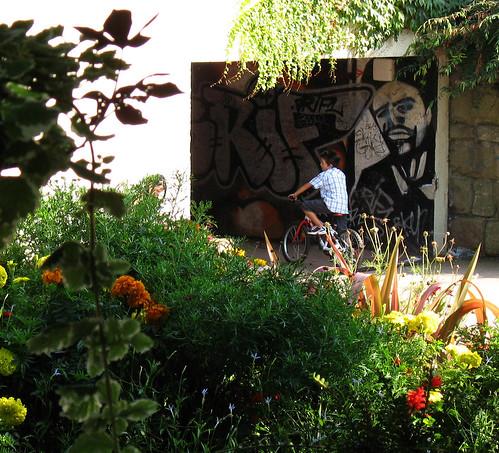 Street Art & Gardens