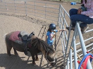 Horse Lessons 5-17-13 (4)