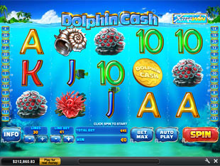 Dolphin Cash slot game online review