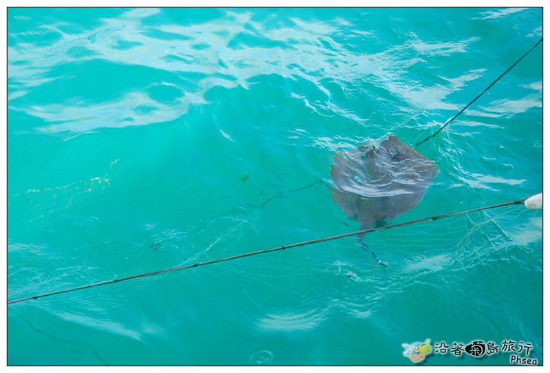 2013歐船長東海休閒漁業_12