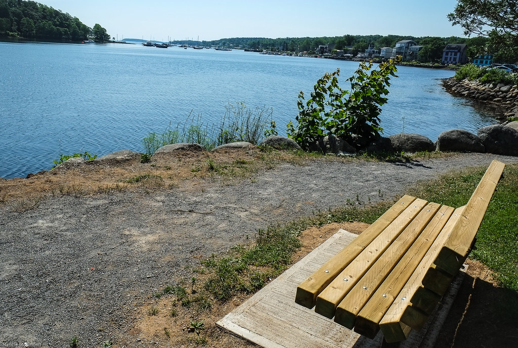 Bench With A View.jpg