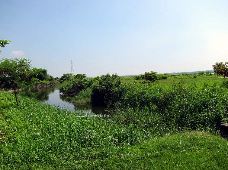 大樹舊鐵橋生態公園 (3)