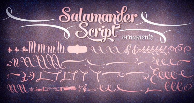 Salamander Script font with ornaments
