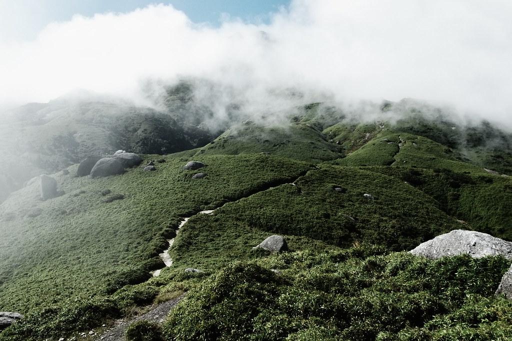 Mt.Miya(FOG)