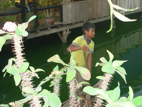 Phnom Penh-Lac Boeng Kak (18)