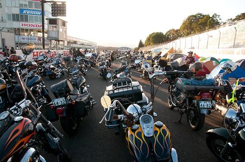 VIBES MEETING 2013 in Miyagi