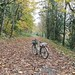 Autumn Mixed-Terrain Ride