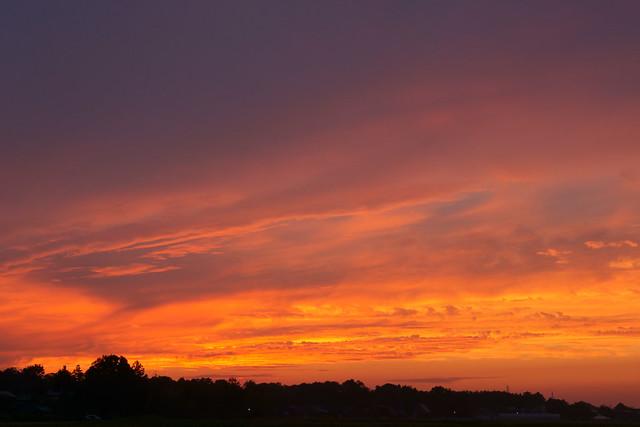 写真_また陽は昇れ!