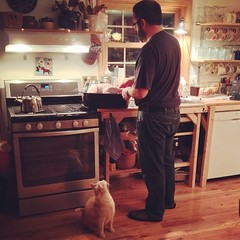 Max the cat is very interested in what Alex is doing for some reason. #thanksgiving #fromourkitchen
