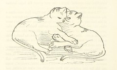 """British Library digitised image from page 94 of """"The Camp-fires of the Everglades; or, wild sports in the South [With illustrations.]"""""""