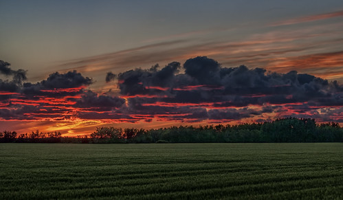 sunset clouds wheatfield ladywood southernmanitoba