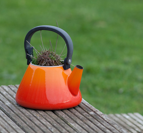 Colourful Kettle
