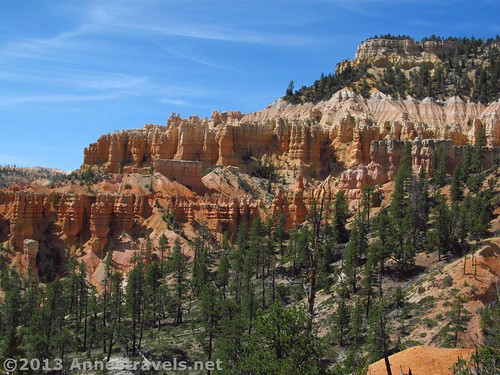 Canyon wall studded with Hoodoos along the Fairyland Trail, Bryce Canyon National Park, Utah