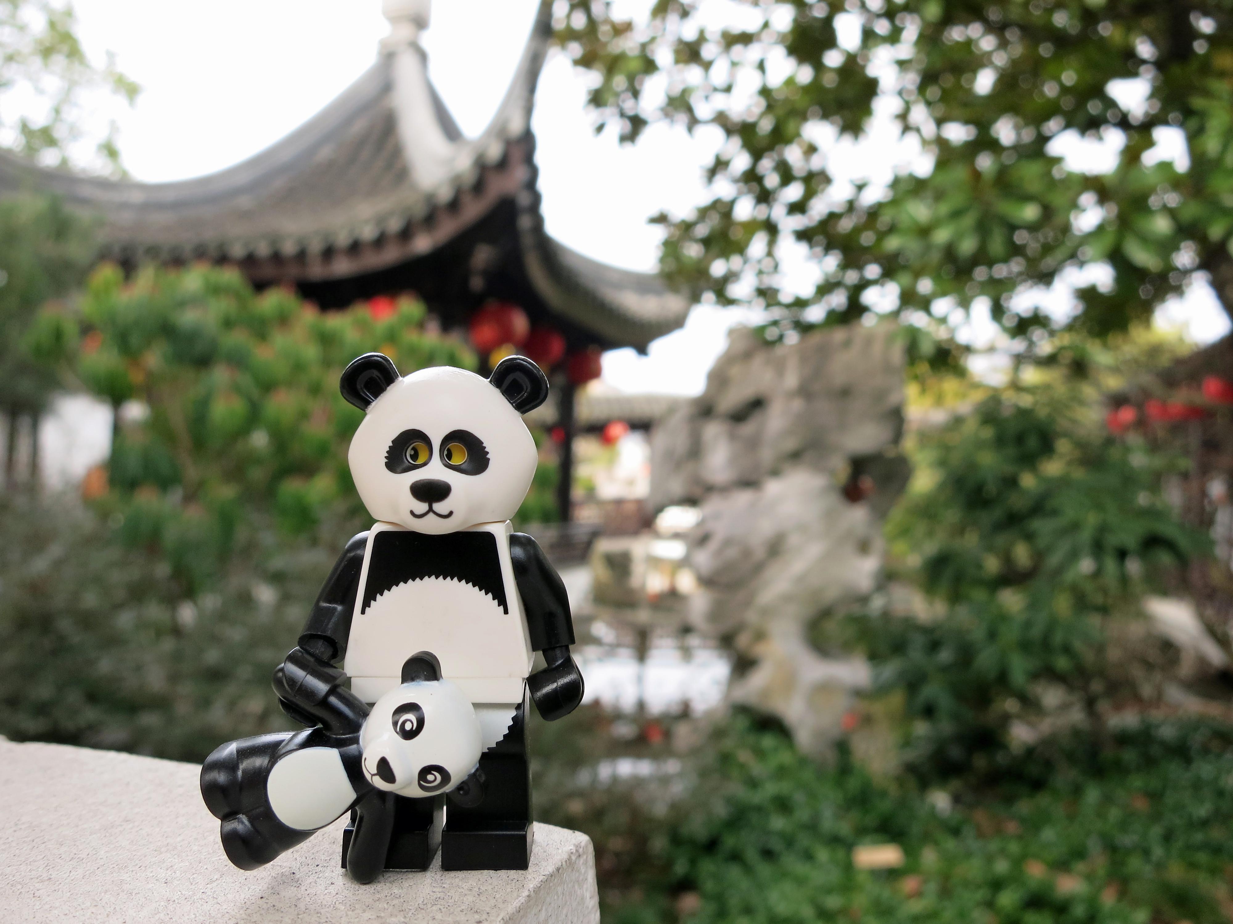 Panda Garden Chinese Food Needles Ca
