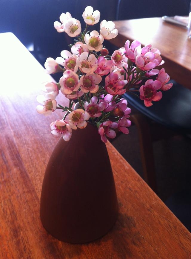 floral snapshot