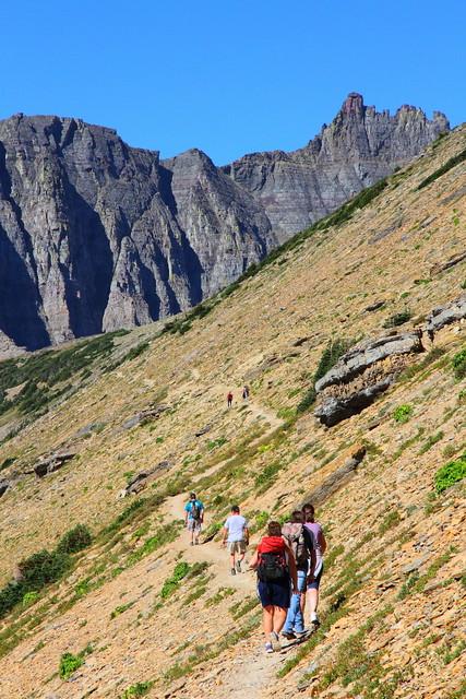 IMG_3846 Piegan Pass Trail