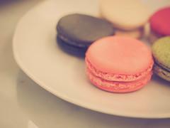 lip(0.0), fondant(0.0), cupcake(0.0), cake decorating(0.0), icing(0.0), cake(1.0), baking(1.0), buttercream(1.0), sweetness(1.0), food(1.0), macaroon(1.0), pink(1.0),