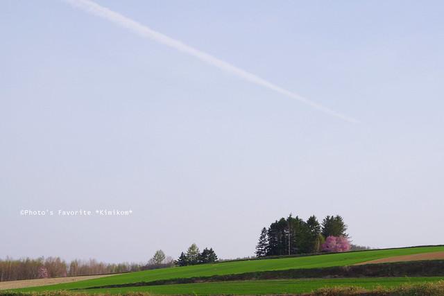 飛行機雲の空の下に