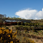 Cornwall 2012-8703