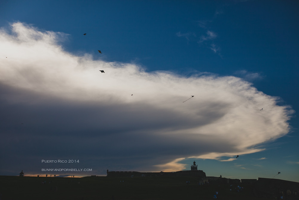 October 18, 2014-IMG_9738