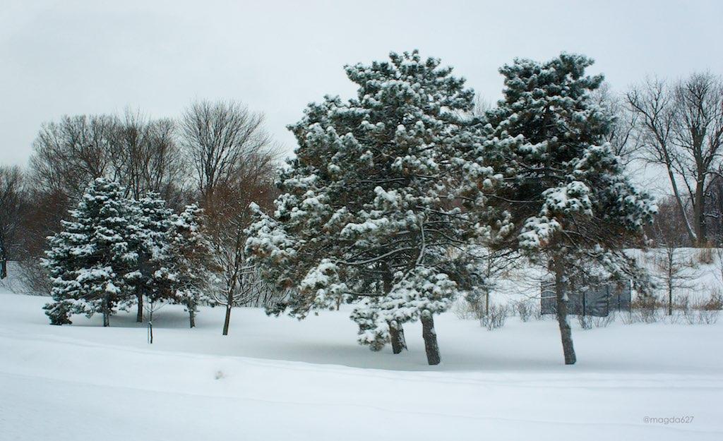anteketborka.blogspot.com, hiver 2