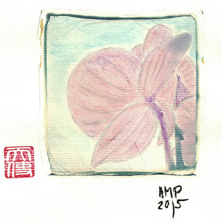 orquidea polaroid 2