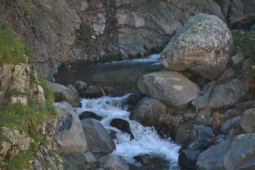 piccolo vuddru (sito tra Briglia e ponte grande)