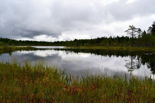 summer lake nature finland geotagged august fin ph bog virrat 2011 pirkanmaa 201108 20110810 saukkolampi geo:lat=6223879200 geo:lon=2416678900