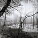 Frozen #6 by bt0070