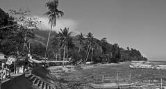 coastal BW