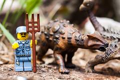 Jurassic Perk...