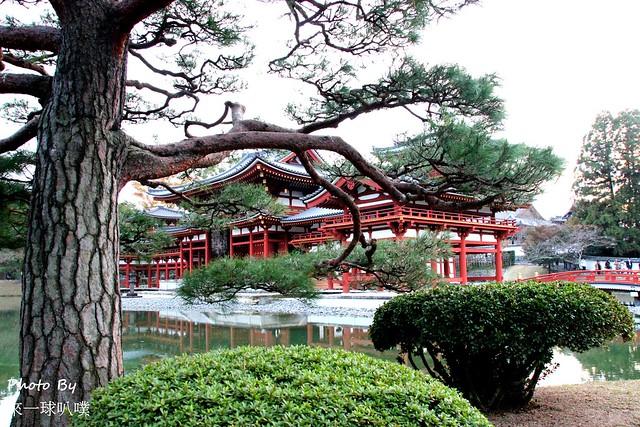 京都旅遊景點-宇治094