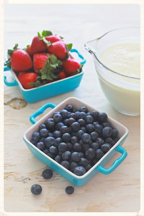Fruit & Yogurt Push-Pops 14