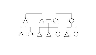 kinship diagram
