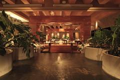 Restaurants in Riviera Maya: Frida