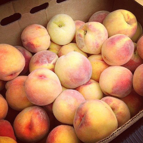 "20 lbs of organic peaches has me singing, ""Peaches for you! Peaches for me!"" Tomorrow I can! (These were a steal! 20# for $15)"