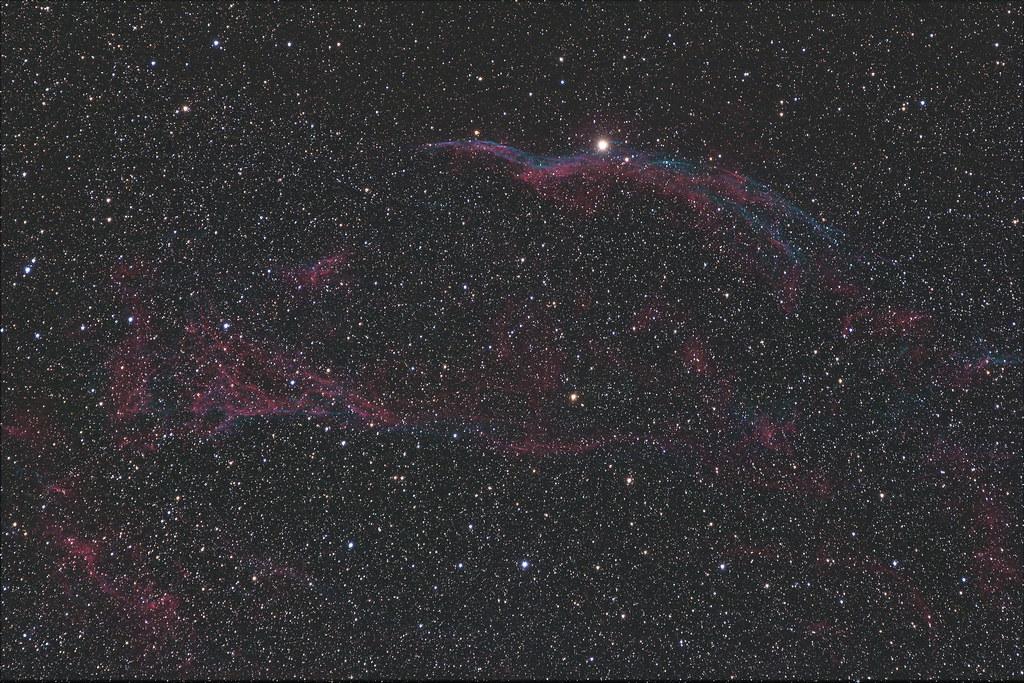 M11 野鴨星團