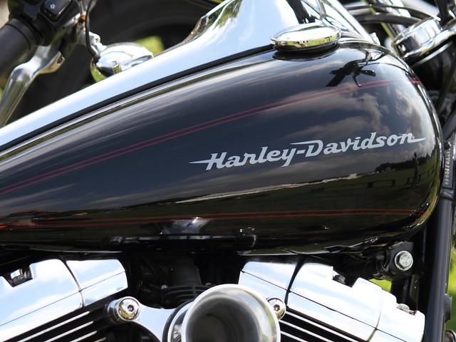 Harley Davidson Tanks