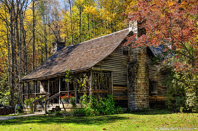 cabin surrounded by fall colors