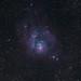 M8 Lagoon Nebula by jpstanley