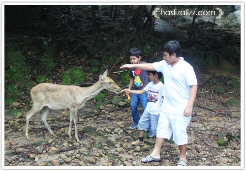 11711476675 79b043a205 o BERCUTI DI HATYAI THAILAND PART 6   songkhla Zoo