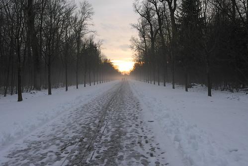 winter sunset (1)