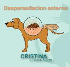 Desparasitacion externa anti-pulgas