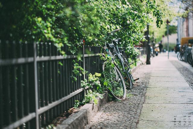 Bici Berlinesa