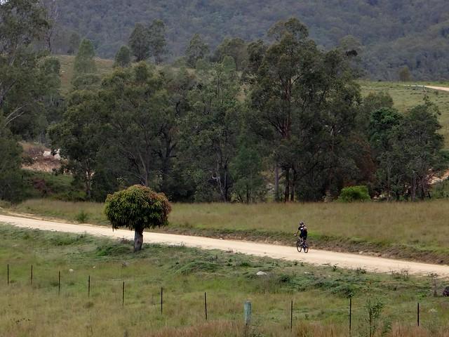 Wilson Road