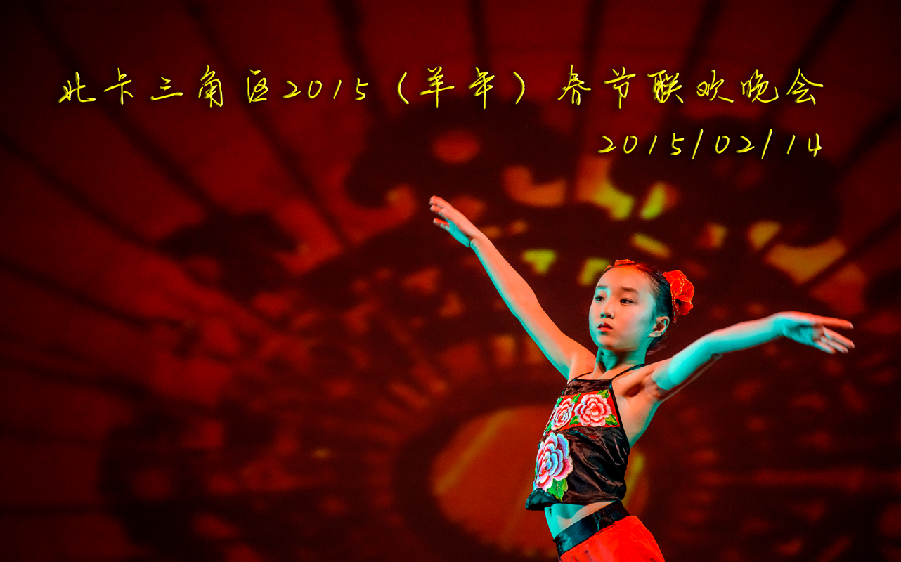 RTP2015 Gala1-1