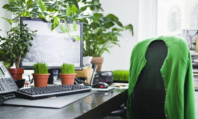 1_oficina verde - diarioecologia.jpg